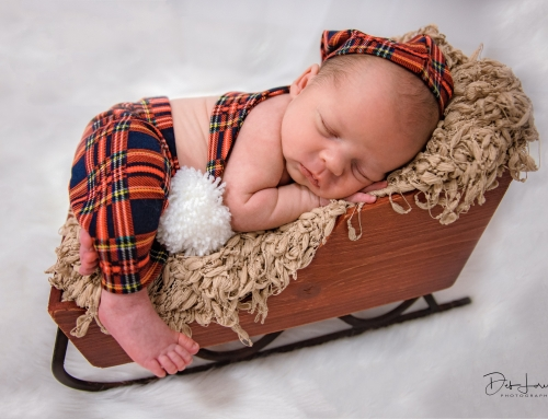 Newborn Holiday Pictures